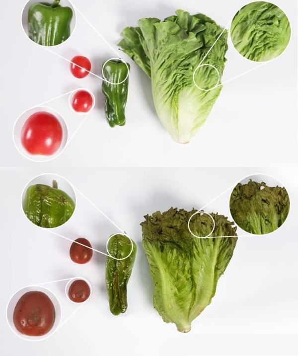 4, cool-gadgets-2020-Freshness-of-Fruits.jpg